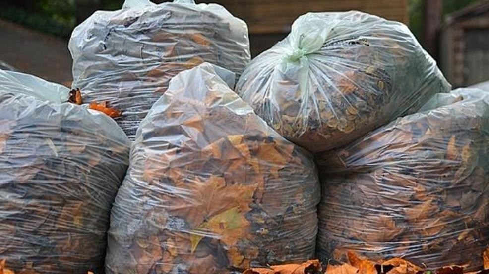 Bags of Leaves